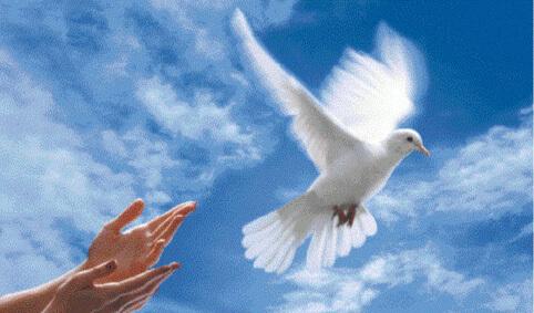 Marie donne la Paix à notre terre