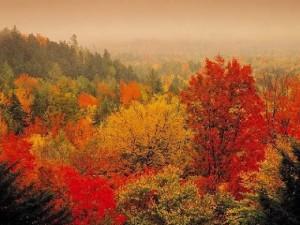equinoxe automne