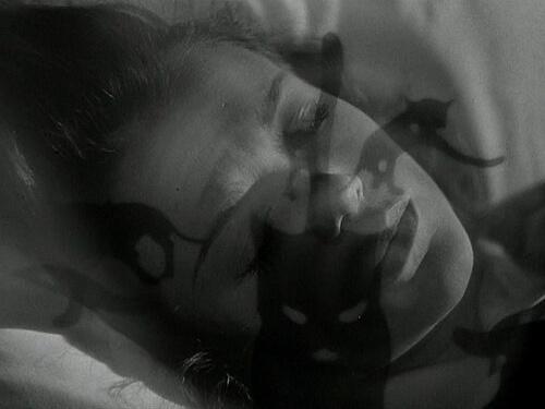 fantomes du passé femme chat