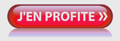 Bouton Web JEN PROFITE (bons plans offre spciale dcouverte)