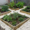 jardin alchimique