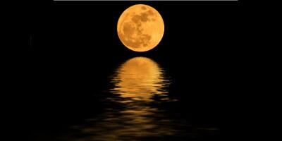 Magie de pleine lune pour r alisation d 39 un souhait - Comment jardiner avec la lune ...