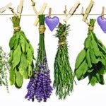 Amulettes mélange Plantes ritualisées