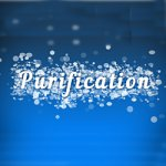 Plantes Purification